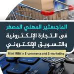 الماجيستير المهني المصغر في التجارة الالكترونية والتسويق الالكتروني